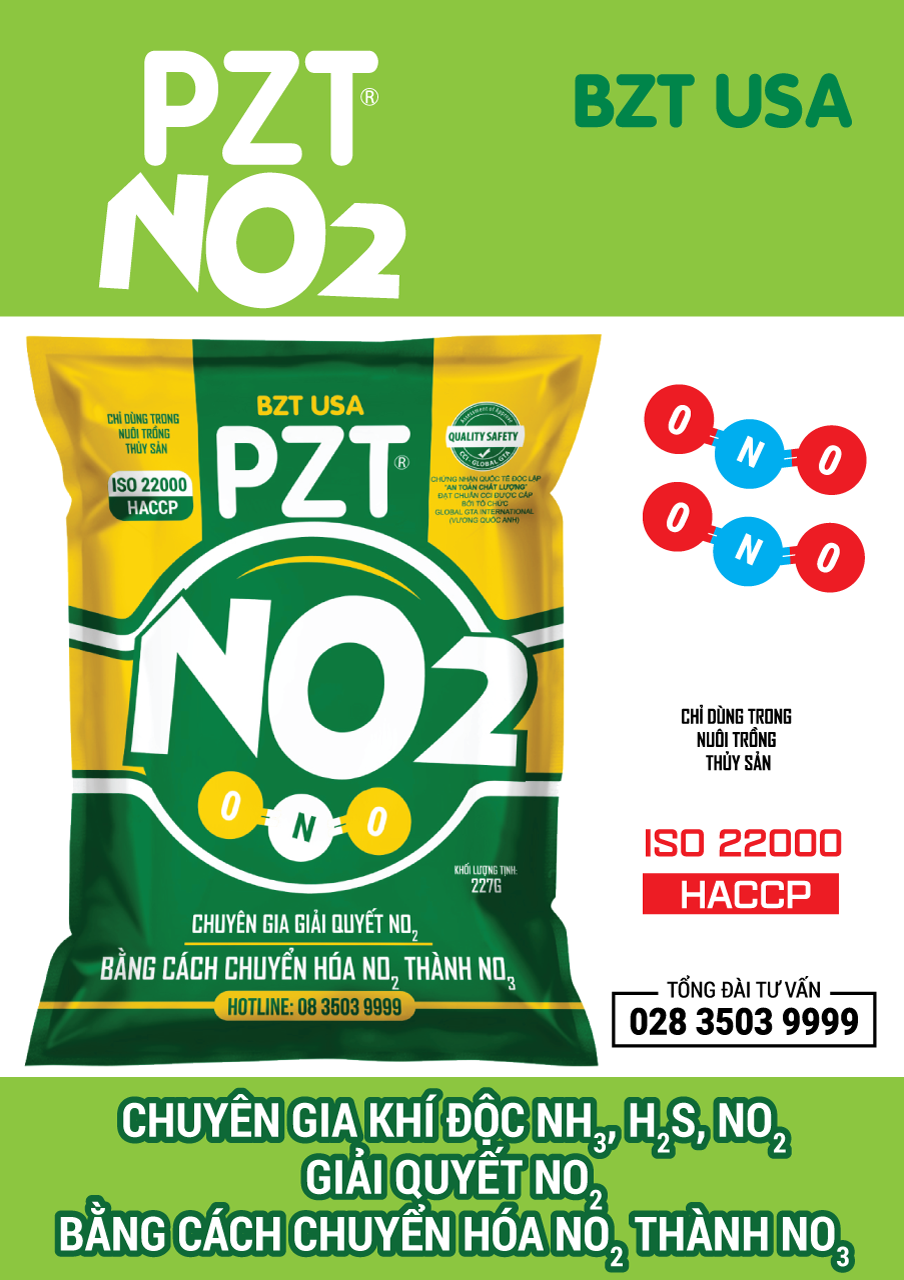 Catalog pzt no2 01