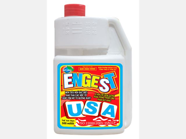 ENGEST USA